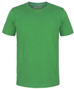 تیشرت یقه گرد سبز پرچمی