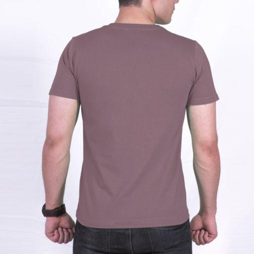 tshirt-men-onion color